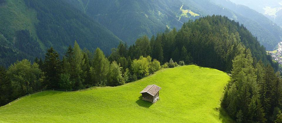 Una malga rifugio immersa in una distesa verde